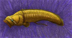 Babel_Fish_by_Sapien