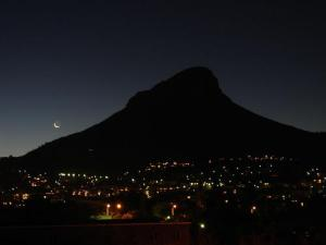 lion's head in dark