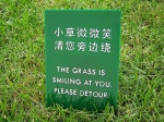 smiling grass