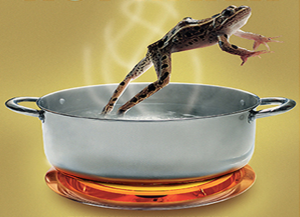 Frog-jump-out-of-boiling-water