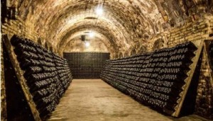 champagne cave