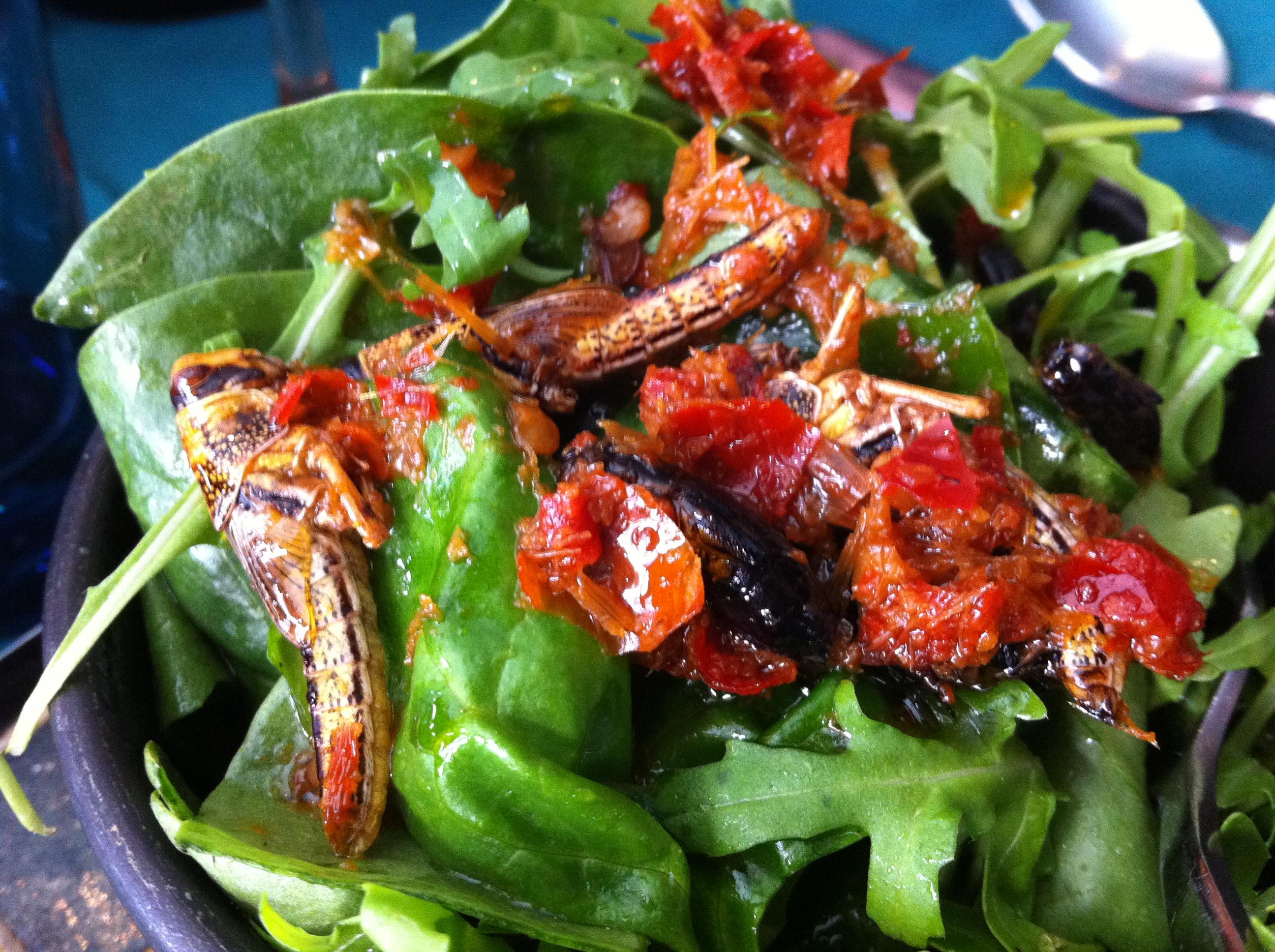 locust-salad