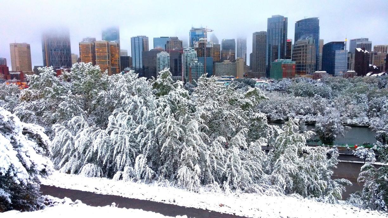Calgary 4